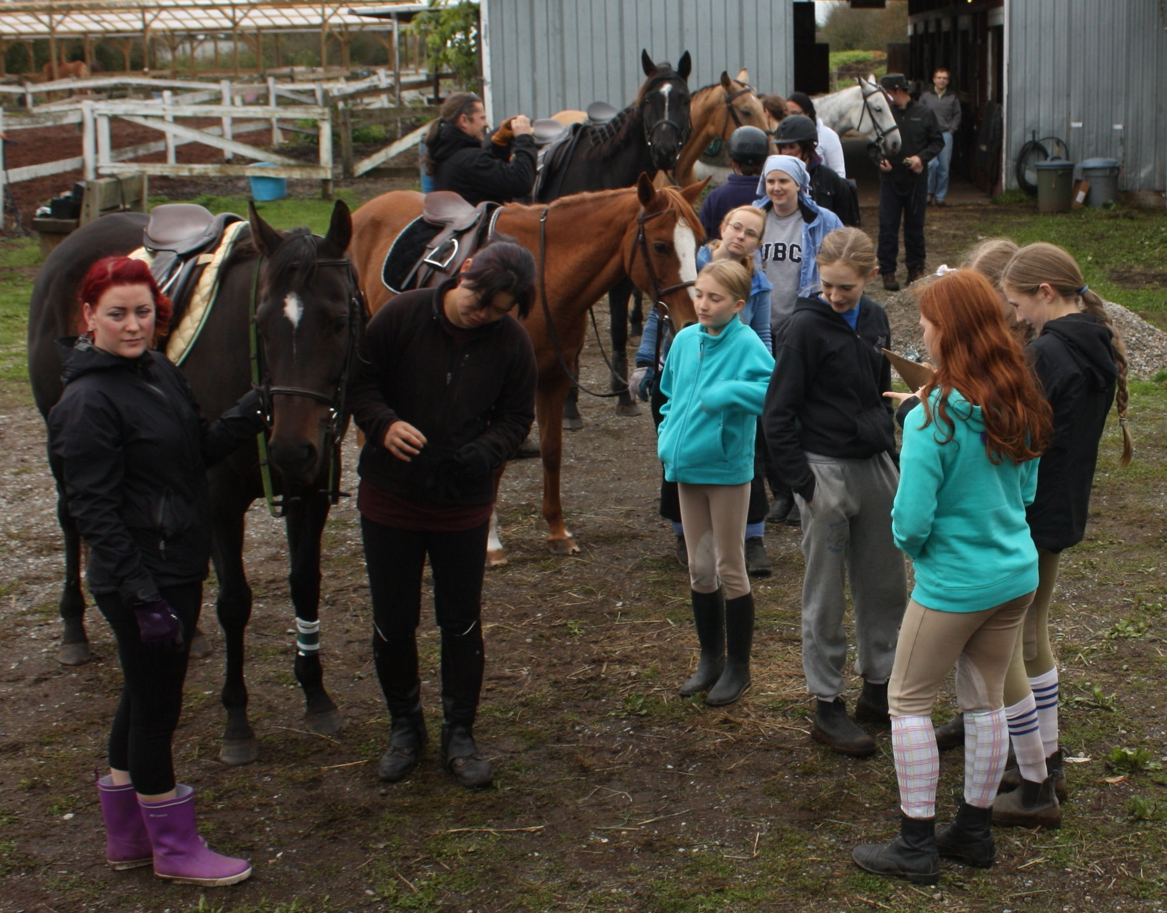 Richmond Pony Judges inspecting the Grooms
